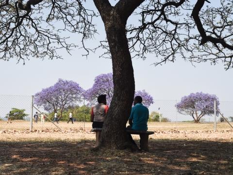 짐바브웨: 정신건강 프로젝트