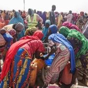 """카메룬: """"마실 물도 잘 곳도 없습니다"""" – 나이지리아 북동부를 탈출한 수만 명"""